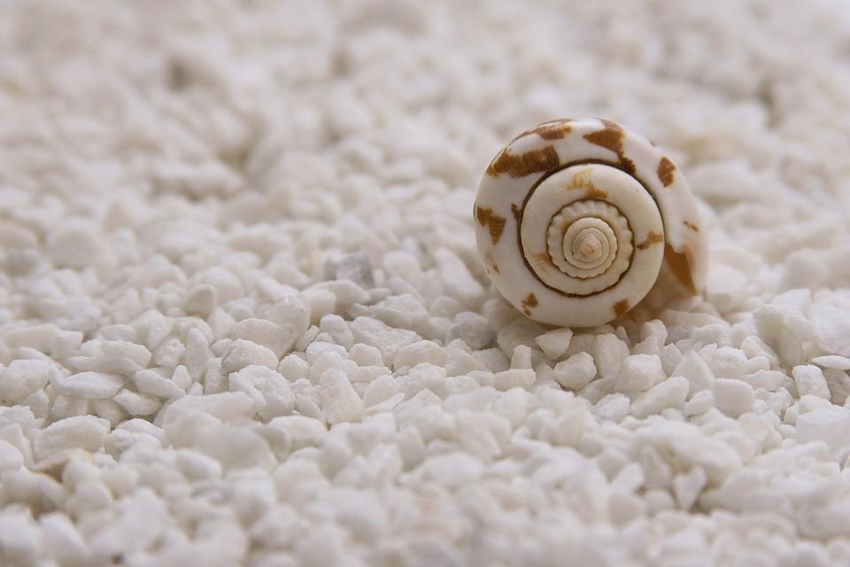 ulita na písku